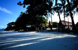 070306_beach.JPG